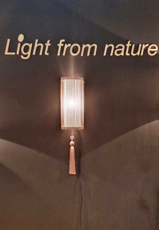 lamp from nature
