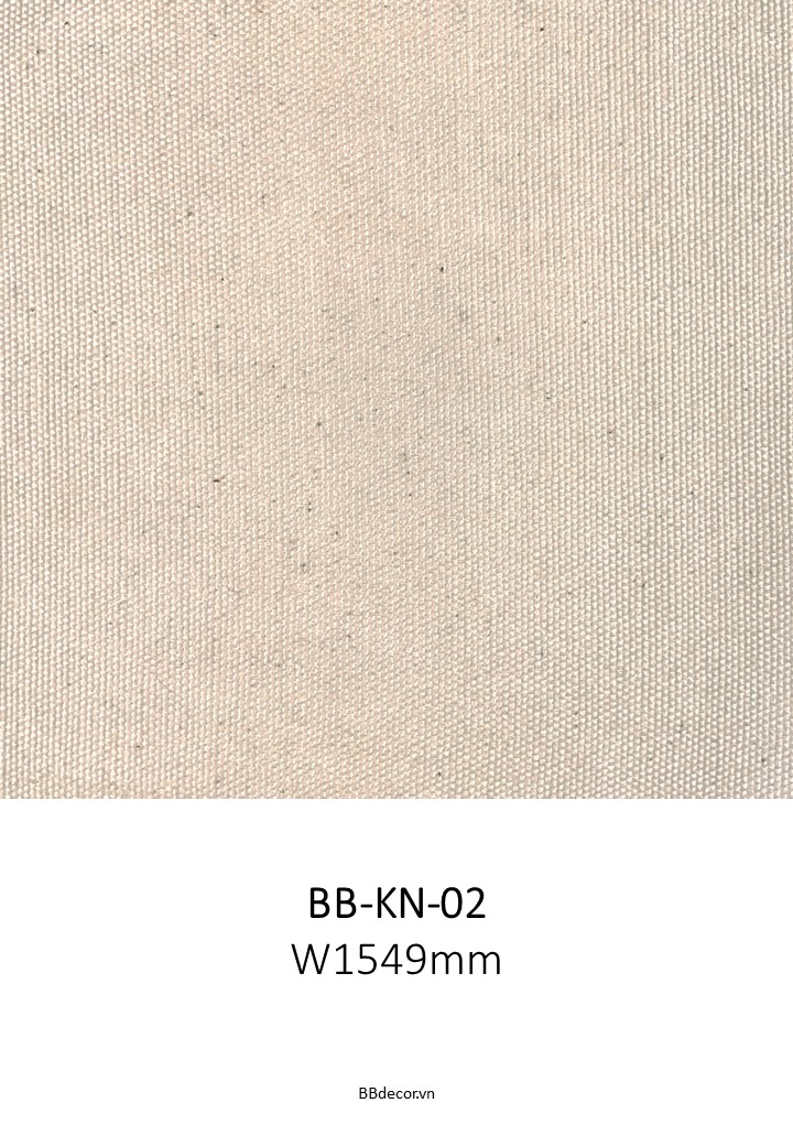 BB CANVAS (3)