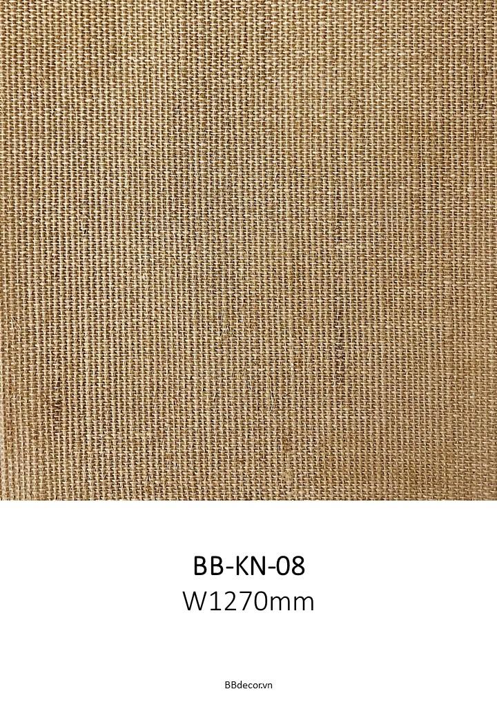 BB CANVAS (9)